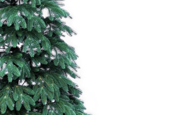 Brad Artificial CONIFER DREAM - image carpatian-detalii-ramuri-600x400 on https://e-sarbatoare.ro
